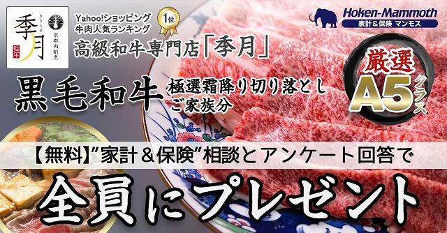 保険相談 保険マンモス キャンペーン